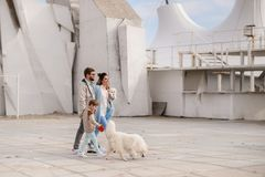 The family walks with a dog. royalty free stock photo