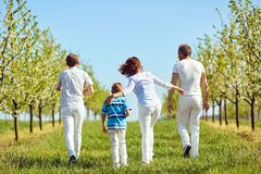 Happy family walks in the garden in spring, summer. Back view. Mother, father and sons in nature royalty free stock photography