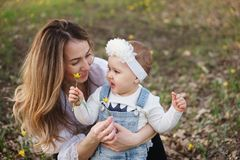 Happy family walks in the spring meadow. Young attractive mother shows her one-year-old daughter forest tulips. Family portrait close-up. They hold one flower in royalty free stock photo