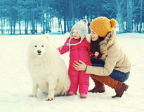Happy family in winter day, mother and child walking with white Samoyed dog Royalty Free Stock Photos