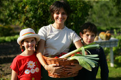 Happy family in a yard Stock Photo