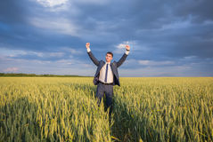 Happy farmer, businessman, standing in wheat field Royalty Free Stock Images