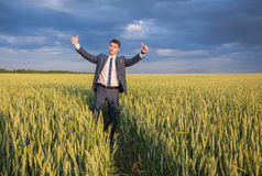 Happy farmer, businessman, standing in wheat field Royalty Free Stock Photo