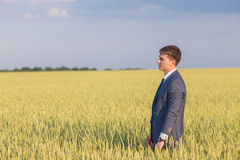 Happy farmer, businessman, standing in wheat field Royalty Free Stock Photography