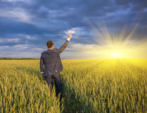 Happy farmer, businessman, standing in wheat field Stock Photos