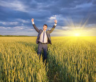 Happy farmer, businessman, standing in wheat field Stock Photo