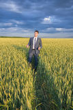 Happy farmer, businessman, standing in wheat field Stock Image