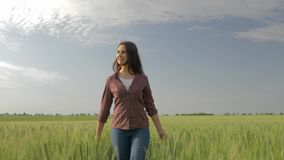 Happy farmer girl walks through barley field and touches green plants on background of sky, wind ruffles her hair. Happy farmer girl walks through a barley field stock video footage