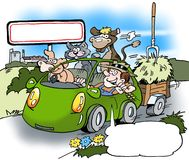 A happy farmer has rented a car Stock Images