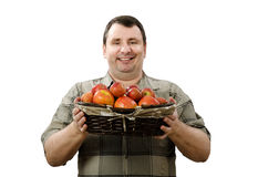 Happy farmer holding a basket of ripe red apples Stock Image