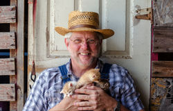 Happy farmer with kittens Royalty Free Stock Images