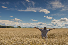 Happy farmer in the rye Stock Photography