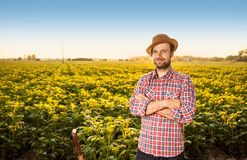 Happy farmer standing in front of potatoes field landscape Royalty Free Stock Image