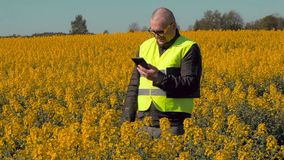 Happy farmer with tablet PC on rape field laughing stock footage