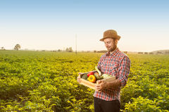 Happy farmer with vegetables in front of field landscape Stock Photos