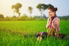Happy farmer woman sitting in rice filed, Thailand Royalty Free Stock Photo