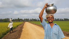 Happy farmer. Working in his paddy fields in rural south india Royalty Free Stock Photos