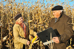 Happy farmers in field Royalty Free Stock Photography