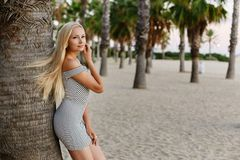 Happy and fashionable blonde model girl with body in trendy striped short dress lean on the palm tree and posing at stock photo