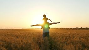 A happy father carries his son on his shoulder, portraying a bird or a plane. Family at sunset in a wheat field. stock footage