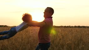 Happy father is circling his son in a wheat field during sunset. stock video footage