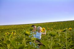 Happy father with his little son in his arms standing on a green field of sunflowers against a blue sky stock photography