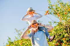 Happy father with his young son have fun on citrus Royalty Free Stock Image