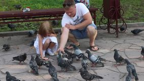 Happy father and little daughter feed pigeons in summer park stock video footage