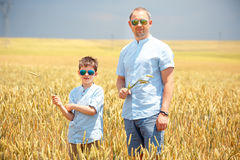Happy father with little son walking happily in wheat field Royalty Free Stock Photos