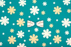 Father`s Day pastel coloured background. Beautiful wooden bow tie floral flat lay. Fathers day greeting card. Stock Photography