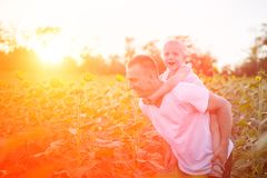 Happy father with son on back walking on a green field of blooming sunflowers at sunset royalty free stock image