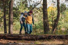 Happy father and son holding hands while boy. Walking on log in forest Stock Photography