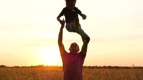 A happy father throws up his son in a wheat field during sunset, in slow motion. stock footage