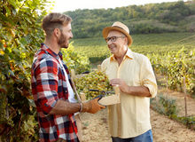 Happy father vintner showing grapes to son. In vineyard Stock Image
