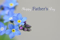 Happy Fathers Day card. Blue flowers on light background. Happy Fathers Day card. Blue forget me not flowers on light background stock photography