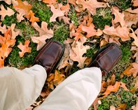 Happy feet. Fall leaves on green grass Royalty Free Stock Photos