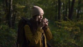 Happy female backpacker in wood stock video footage