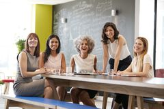 Happy female colleagues at a work meeting smiling to camera stock photos