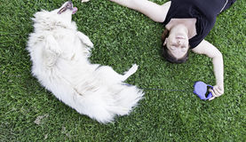 Happy female dog Royalty Free Stock Photos