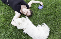 Happy female dog Stock Photography