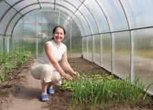 Happy female farmer Stock Photos
