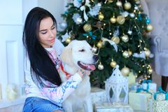 Happy female person sitting with white labrador near decorated Christmas tree. royalty free stock photography
