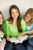Happy female student Stock Images