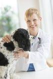 Happy Female Veterinarian Examining Dog Stock Photography