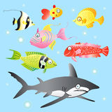 Happy fish Stock Images