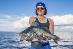 Happy fisher woman with zander fish trophy at the boat. Fishing concept royalty free stock photography
