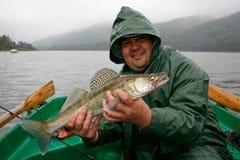 Happy fisherman. Presents zander, caught big fish Stock Images
