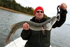 Happy fisherman and giant pike. Happy fisherman presents big pike on boat, baltic sea and scandinavian pike Stock Photography