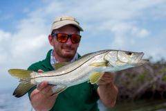 Happy Fisherman holding a nice fresh Snook. A man holding a Snook fish caught with lure, somewhere on the flats of Belize next too a mangrove Royalty Free Stock Photo