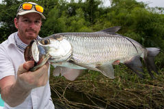 Happy Fisherman holding a Tarpon. A man holding a  juvenile Tarpon caught with lure, on the Belize river, in the forest near Belize City Stock Photography